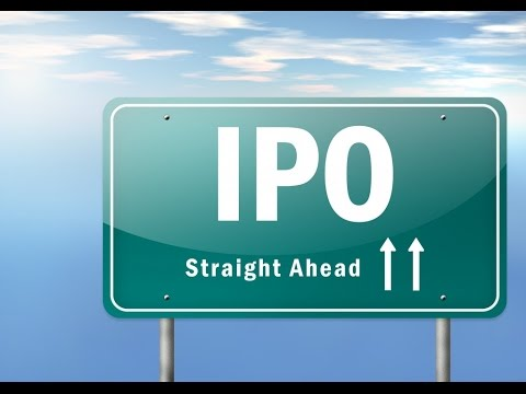 What is an IPO (Initial Public Offering)?