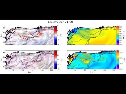 Continental shelf submesoscale coherent structures (San Pedro Bay)