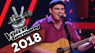 Little Feat - Willin (Liam Blaney) | The Voice of Germany | Blind Audition