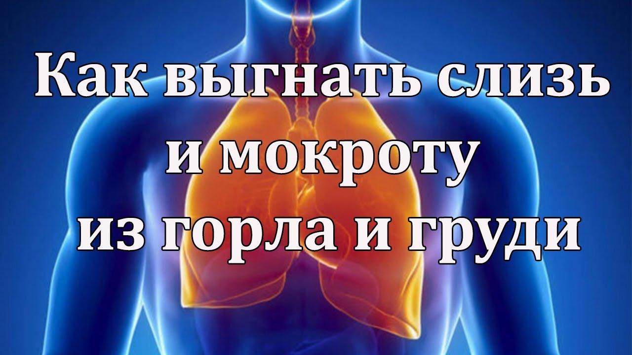 Как выгнать слизь и мокроту из горла и груди? Как выгнать слизь и мокроту доступными средствами?