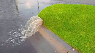 Here's What Happens When You Pop A Grass Bubble…