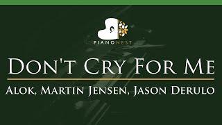 Baixar Alok, Martin Jensen, Jason Derulo - Don't Cry For Me - LOWER Key (Piano Karaoke Instrumental)