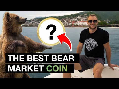 The Best Cryptocurrency To Buy During The Bear Market