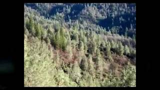 Affordable Shasta County Land, Redding Land, Real Estate, Property & Redding CA Land For Sale, MLS