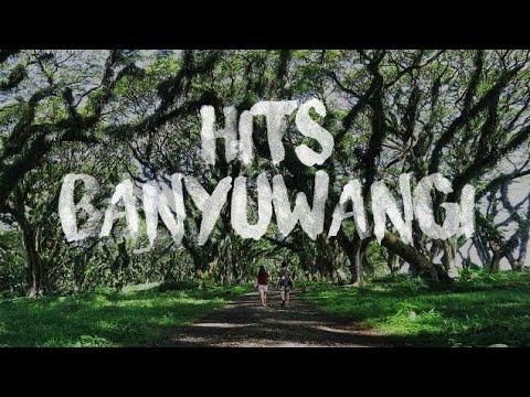"""WISATA HITZ BANYUWANGI - De'Djawatan, Hutan Pinus Songgon, Kampung Lukis """"TRAVEL VLOG BANYUWANGI"""""""