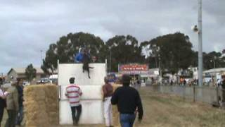Geelong Royal Show 2008 - Dog Jumps 2.4 Meters
