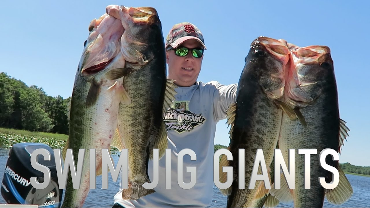Best day of bass fishing ever so many giant fish youtube for Best days for fishing