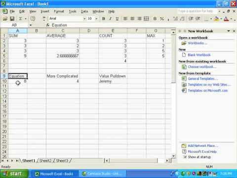 How To Use Microsoft Excel-Help With Forumulas Functions