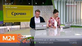 Смотреть видео Шесть человек погибли в ДТП с микроавтобусом и фурой в Домодедове - Москва 24 онлайн