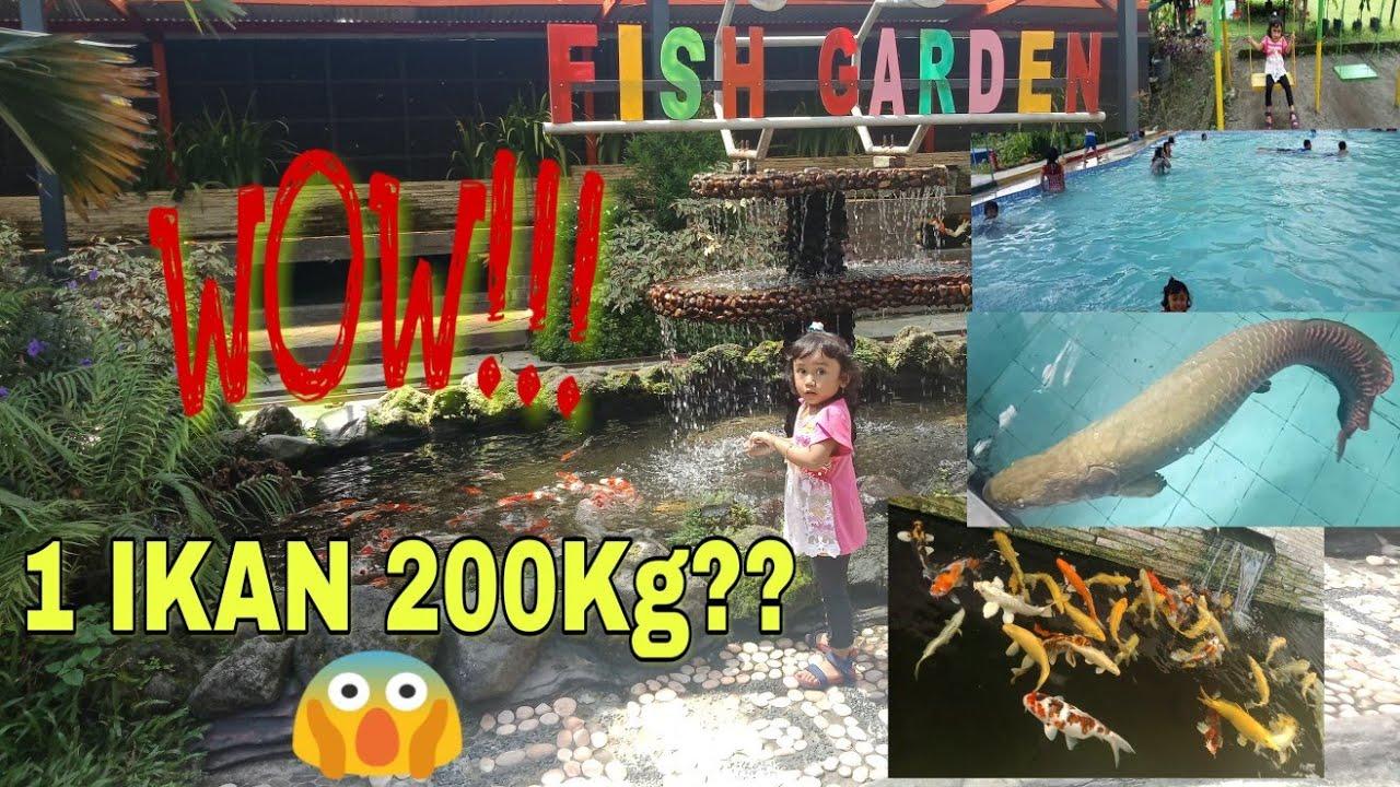 Wisata blitar fish garden