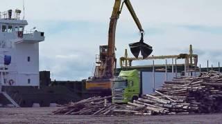 Sennebogen 870 M special loading wood chips