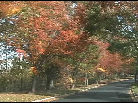 driving-the-hills-of-basking-ridge-and-bedminster-nj