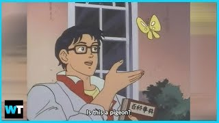 """What's The Story Behind The """"Is This A Pigeon"""" Meme? 