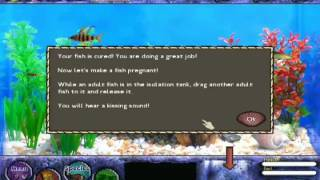 Fish Tycoon Trailer - Free Download Game Aquarium