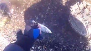 Рыбалка на острове Сахалин , устье реки Шишкевича(Пилотное видео, выходного дня , с использованием экшен-камеры Sjcam., 2016-05-03T10:44:54.000Z)