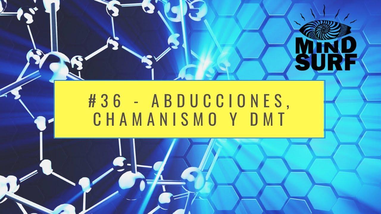 #36 - Abducciones, chamanismo y DMT (Con Néstor Berlanda)