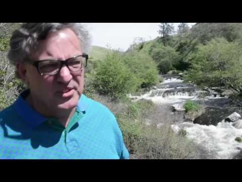An Oregon Creek In Crisis