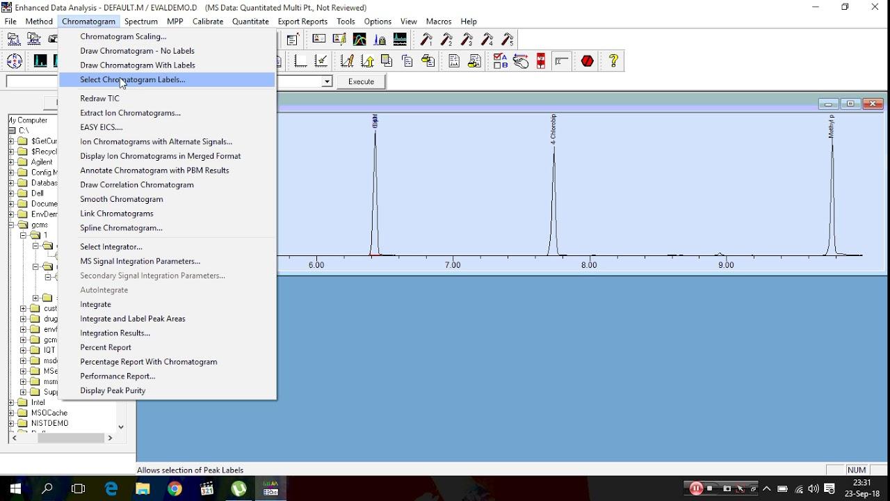 Manually Integration in MSD Chemstation