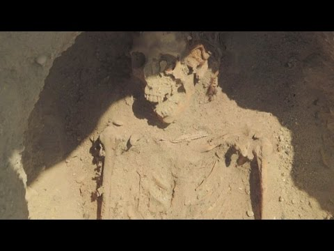 Million Mummy Discovery Disputed In Egypt
