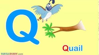 Toddler Words   Words Starting With Q