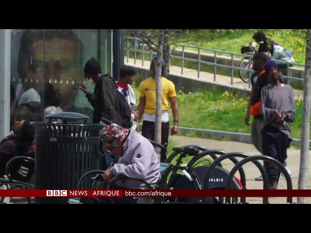 Coronavirus : Les Afro-Américains comme principales victimes - BBC Infos 09/04/2020