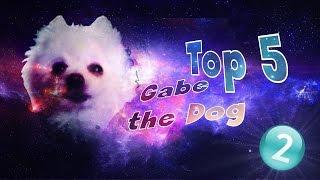 Top 5 remixów: Gabe The Dog #2