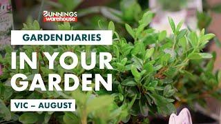 Gardening in August | VIC | Bunnings Garden Diary