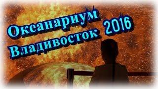 Океанариум Владивосток остров Русский 2016 самый большой мире видео открытие долгожданное для детей(ВК: https://vk.com/alenushkatv Подписывайтесь: https://www.youtube.com/channel/UCyht8eZIFQVy_RrkIIqg8bw Все наши видео: ..., 2016-10-08T12:33:55.000Z)