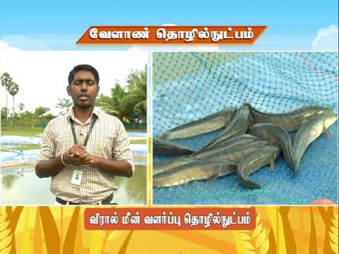 Download Pon Vilaiyum Bhoomi (29.01.2021) Agricultural Technology: