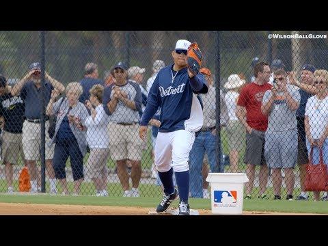 Tigers: Wilson Glove Day 2014