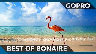 GoPro: Best Of Bonaire