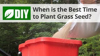 What is the Best Time to Plant Grass Seed? - Fall Lawn Tips