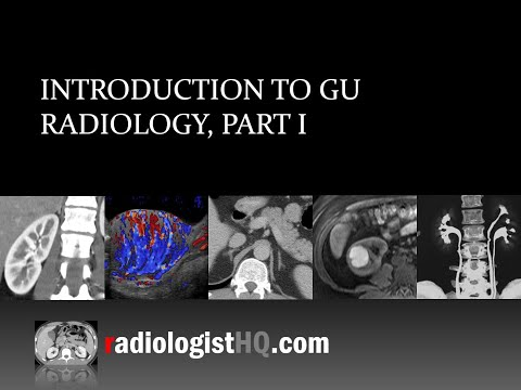 Introduction To Genitourinary Radiology, Part I