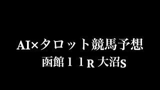 函館11R 大沼S をAI×タロットで予想してみました。