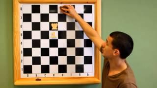 Урок №8 Шахматы с Маратом Сулеймановым
