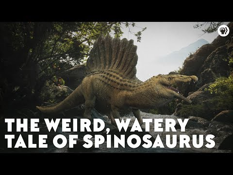 The Weird, Watery Tale Of Spinosaurus