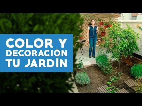 C mo agregar color y decorar el jard n youtube for Como decorar un arbol de jardin