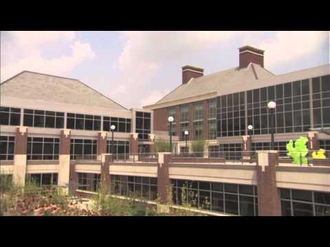 University of Illinois - Stars