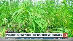 CBD oil business is booming in Kentucky