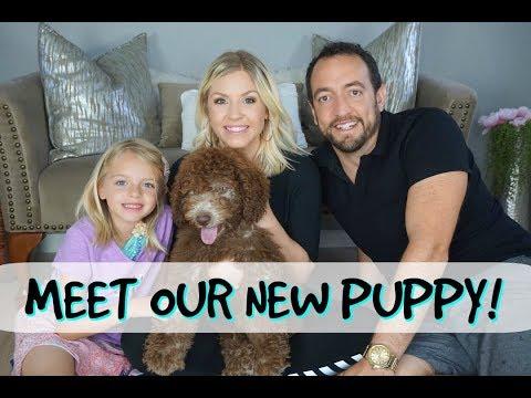 WE GOT A PUPPY!| MEET OUR LABRADOODLE| Megan Navarro