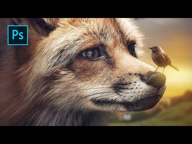 The Fox & Bird - Photoshop Manipulation Tutorial