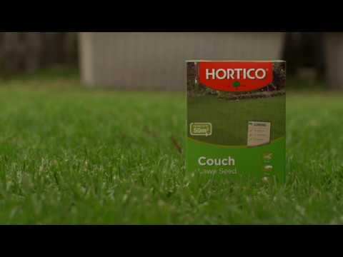 How To Choose Lawn Seed Youtube