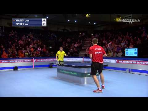 World championships of Ping Pong 2014: last 16 match - Pistej (SVK) - Wang (CHN)