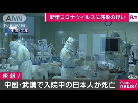 ウイルス 人 コロナ 新型 日本