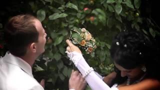 Свадьба в Гомеле