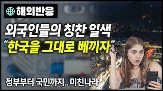 """[해외반응] """"한국을 그대로 베끼자"""" 한국인들의 침착함…"""