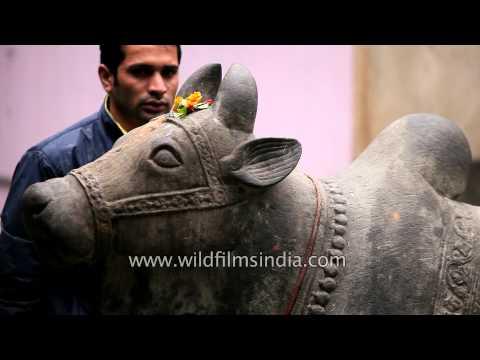 Statue of Nandi bull inside the Bhootnath Temple, Mandi