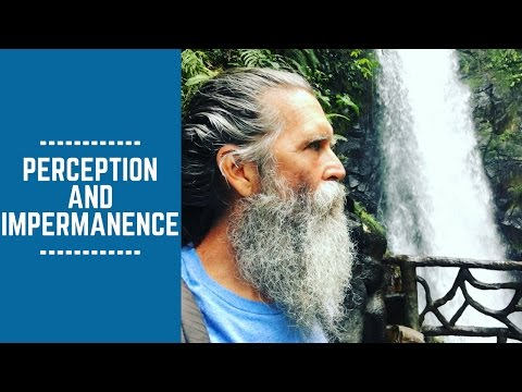Perception and Impermanence