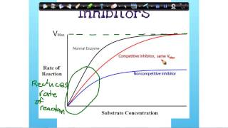 Enzymes -Inhibitors [graph]