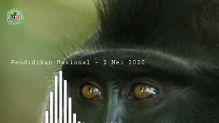 Pendidikan Konservasi Tangkoko - Hari Pendidikan Nasional 2020